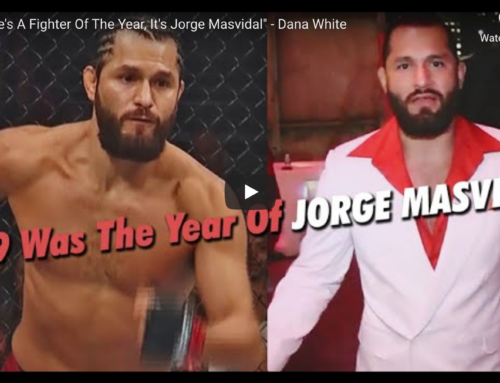 UFC Fighter of The Year. Who is Your Favorite MMA Fighter of The Year?